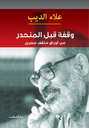 وقفة قبل المنحدر - علاء الديب