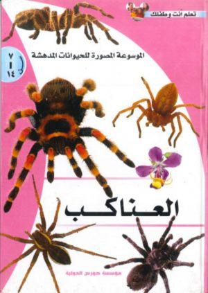 الموسوعة المصورة للحيوانات المدهشة: العناكب