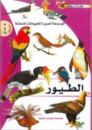 الموسوعة المصورة للحيوانات المدهشة: الطيور